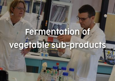 Fermentation of vegetal sub-products