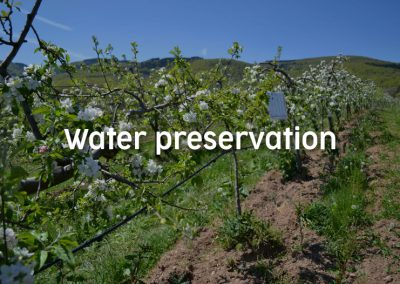 Water preservation
